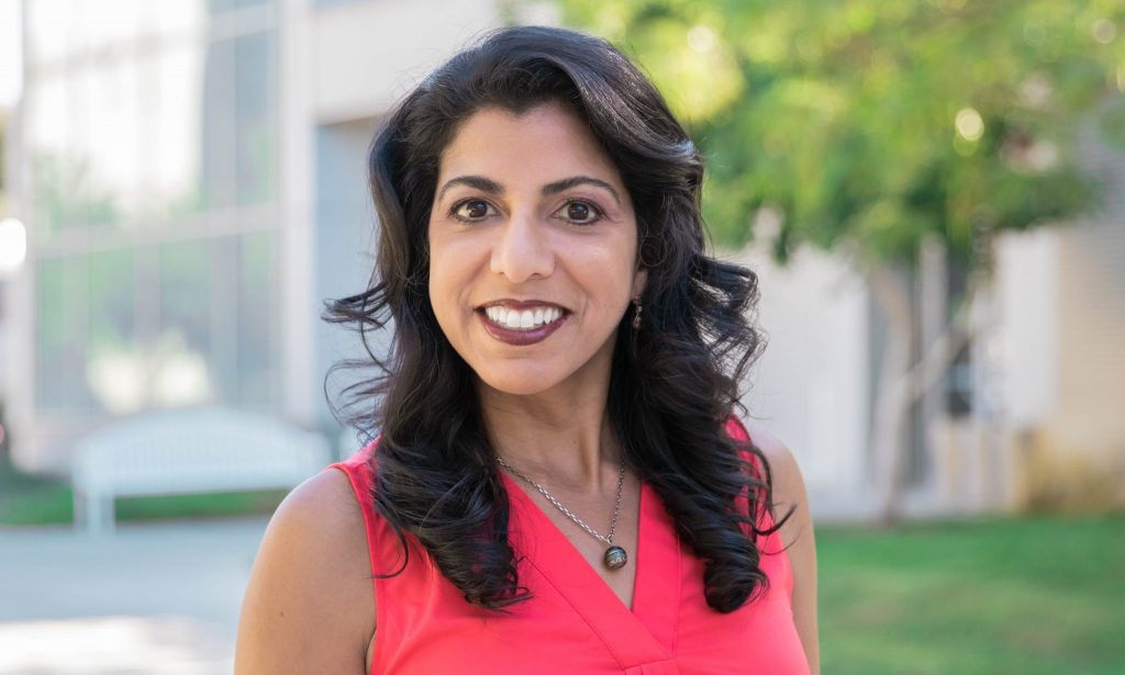 uc davis computer science mechanical aerospace engineering professor raissa dsouza